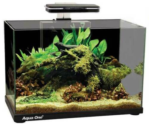 Aqua One Focus 36 Glass Aquarium 36L 50X25X34Cm Black