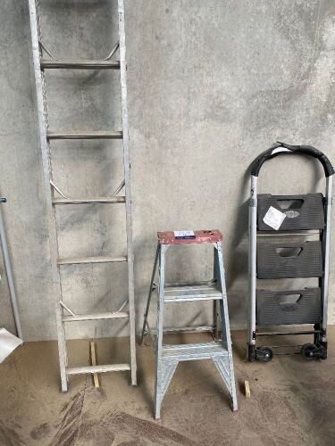 3 x Assorted Ladders